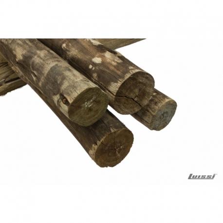 Postes Polines Pino CCA 2.63mt x 9cm UNID